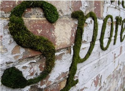 green-graffiti-mossberger-project