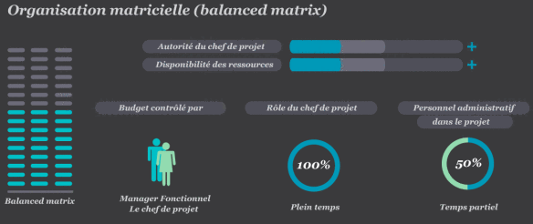 Organisaton matricielle (balanced matrix)